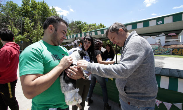 ALTE.BROWN, EL MOVIL DE ZOONOSIS SIGUE RECORRIEENDO EL DISTRITO
